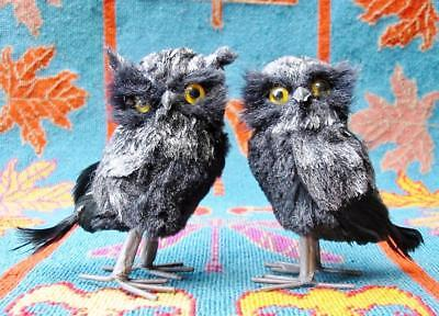 Halloween Pair of Gray Feathered Black Owls 5 inches