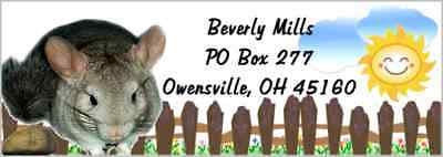 Chinchilla 120 piece set address labels & envelope seals laser print meadow