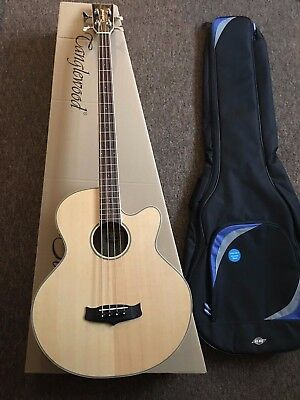 Electro Acoustic Bass guitar Solid Top,Fishmans pre amp £430  RRP + gig bag case