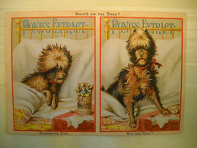 PONDS EXTRACT Victorian medicinal Pain REMEDY TRADE CARD CHROMO sick dog better