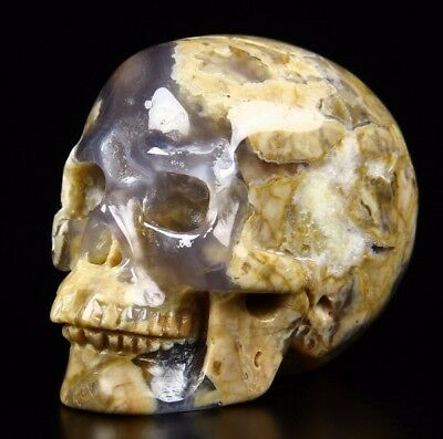 "Gemstone 2.0"" ARGENTINA BLUE STONE Carved Crystal Skull, Realistic, Healing"