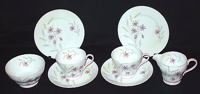Shelley EVENING STAR Tea for Two Tea Set
