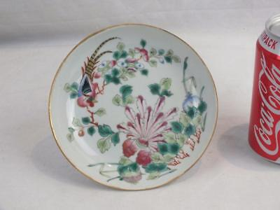 19Th C Chinese Porcelain Famille Rose Phoenix Floral Dish - Red Square Marks