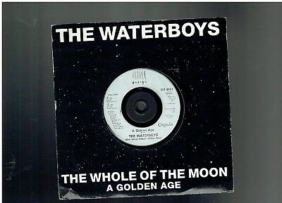The Waterboys The Whole Of The Moon Ps 45 1991