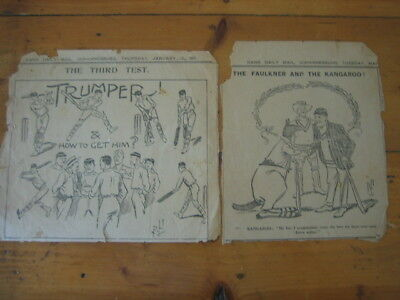 Australia Cricket  TRUMPER clipped paper items  RARE pieces v South Africa 1911