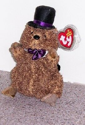 PUNXSUTAWNEY PHIL 2006 PURPLE TIE Ty Beanie Baby NON MINT HANG TAG