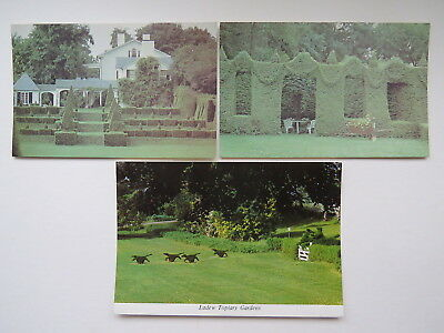 TOPIARY Trees & Hedges 3x postcards Maryland USA