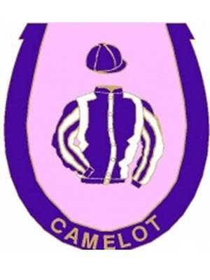 Camelot enamel badge - in his racing colours
