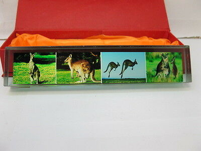5X New Kangaroo Crystal Paperweight 18cm long