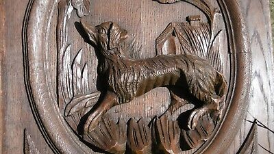 SUPERB 19thc BLACK FOREST OAK PANEL WITH RELIEF CARVED HUNTING DOG C.1870