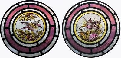 Beautiful Victorian Painted Pair Of Bird Roundels English Stained Glass Windows