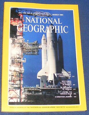 National Geographic Magazine March 1981 - Wildlife Trade/space Shuttle/sumatra
