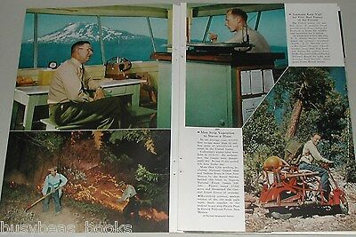 1956 magazine article, USA NATIONAL FORESTS, Forest Services, parks woodlands