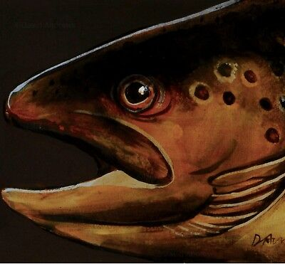 TROUT : ORIGINAL OIL PAINTING : Salmon Fly Fishing Fish Art by David Andrews