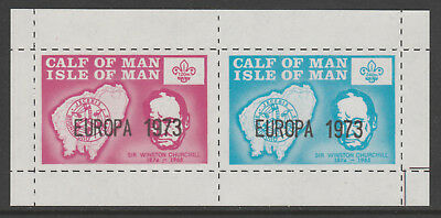 IOM Calf of Man 6056 - 1973 SCOUTS & CHURCHILL  m/sheet unmounted mint