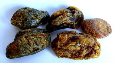 66.9 g FIVE VINTAGE GENUINE BALTIC RAW AMBER STONE/NUGGET BUTTERSCOTCH BERNSTEIN