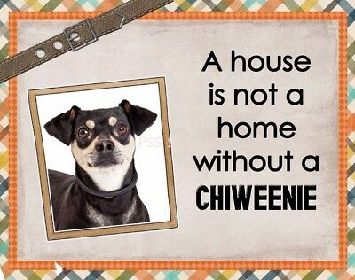 CHIWEENIE Custom Magnet Using YOUR Photo A House Is Not A Home
