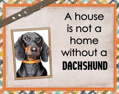 DACHSHUND Custom Magnet Using YOUR Photo A House Is Not A Home