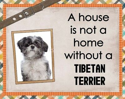 TIBETAN TERRIER Custom Magnet Using YOUR Photo A House Is Not A Home