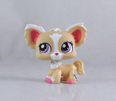 Littlest Pet CHIHUAHUA Dog Collection Child Girl Boy Figure Toy Loose LPS23