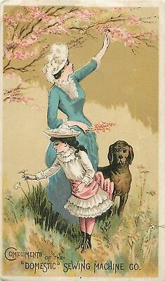 "1800s Victorian Trade Card - ""Domestic"" Sewing Machine - Two Gals and a Dog"