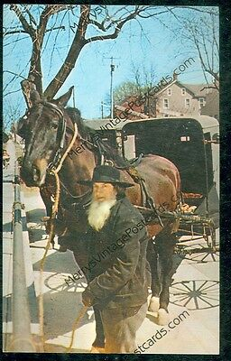 Tied to the Hitching Post, Amish Style (chrome post card,Let's Deal(horseG#65)
