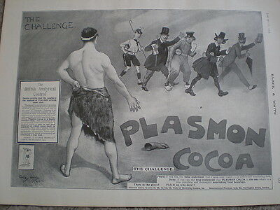 Plasmon cocoa only cocoa that nourishes art advert 1903