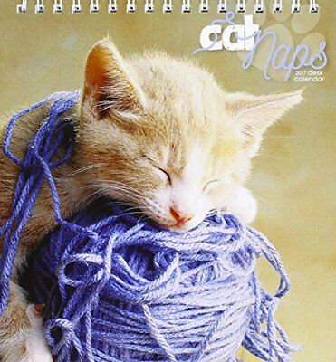 Cat Naps Easel 2017 Calendar (Desk Calendar) 1785796011 The Fast Free Shipping