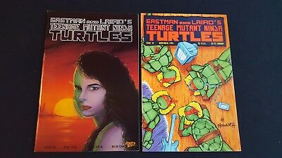 Teenage Mutant Ninja Turtles: lot of 5: #22, #24, #28, #41, & Tales of TMNT #1
