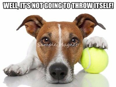 JACK RUSSELL TERRIER Ball Funny Fridge Magnet