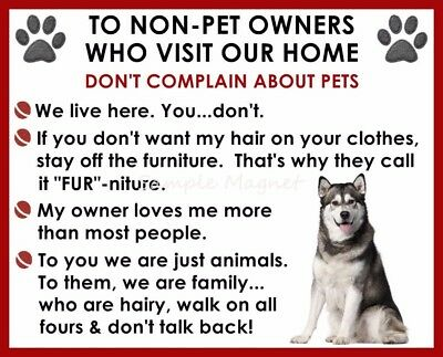 ALASKAN MALAMUTE House Rules for Non Pet Owners Funny Fridge Magnet