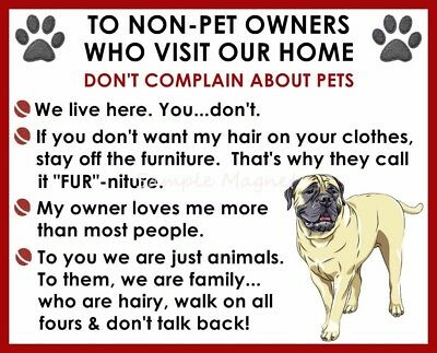 BULLMASTIFF House Rules for Non Pet Owners Funny Fridge Magnet Design 2