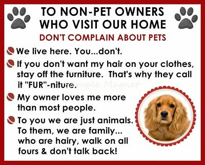COCKER SPANIEL House Rules for Non Pet Owners Funny Fridge Magnet