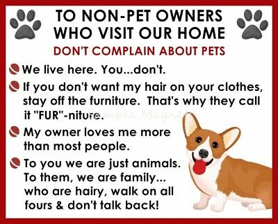 CORGI House Rules for Non Pet Owners Funny Fridge Magnet