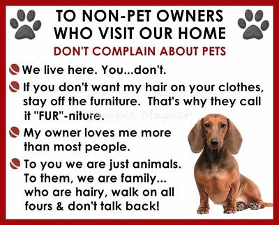 RED DACHSHUND House Rules for Non Pet Owners Funny Fridge Magnet