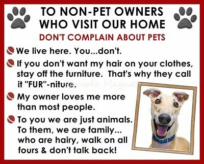 GREYHOUND House Rules for Non Pet Owners Funny Fridge Magnet