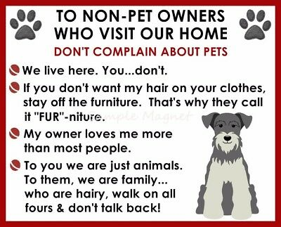 MINIATURE SCHNAUZER House Rules for Non Pet Owners Funny Fridge Magnet  #2
