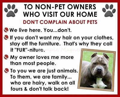 PIT BULL House Rules for Non Pet Owners Funny Fridge Magnet