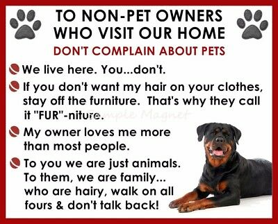 ROTTWEILER House Rules for Non Pet Owners Funny Fridge Magnet