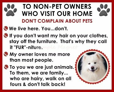 SAMOYED House Rules for Non Pet Owners Funny Fridge Magnet