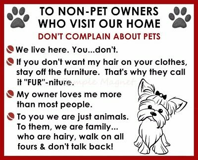 YORKSHIRE TERRIER House Rules for Non Pet Owners Funny Fridge Magnet Design 2