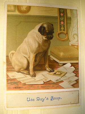 DAY'S SOAP Victorian antique TRADE CARD CHROMOLITHOGRAPH pug dog chews mail
