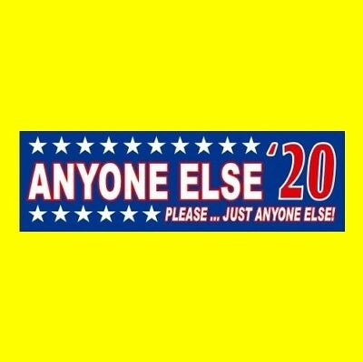 "Funny ""ANYONE ELSE '20"" Democratic ANTI DONALD TRUMP BUMPER STICKER decal 2020"