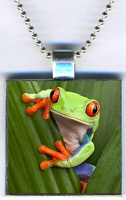 "Tree Frog Amphibian Color Jewelry Square Pendant Charm Necklace 24"" Chain NEW"