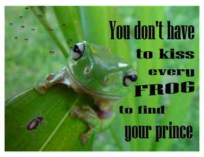 Custom Made T Shirt Don't  Have To Kiss Every Frog To Find Your Prince Funny Bug