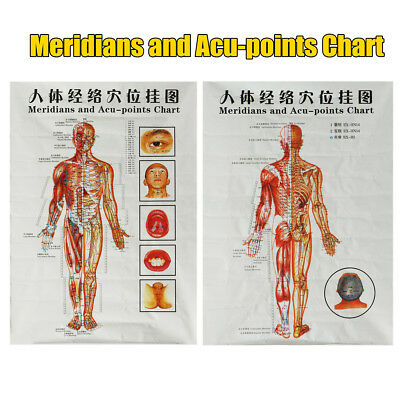 1Pcs Chinese Medicine Body Acupuncture Points Meridians And Acupoints Chart New