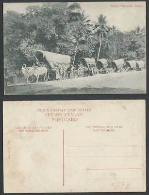 Ceylon Old Postcard NATIVE TRANSPORT Men and Double Bullock Carts Plate & Co 109