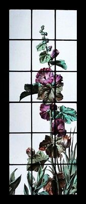 Rare Stunning Painted French Hollyhocks Antique Stained Glass Window