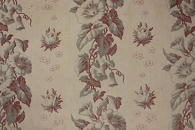 Antique French morning glory printed cotton c 1890 faded GRAY grey Burgundy