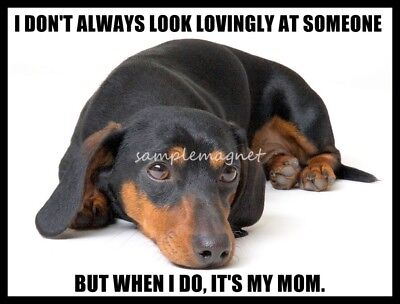 "DACHSHUND Tan Black Love Mom 4"" x 3""  Fridge Magnet"
